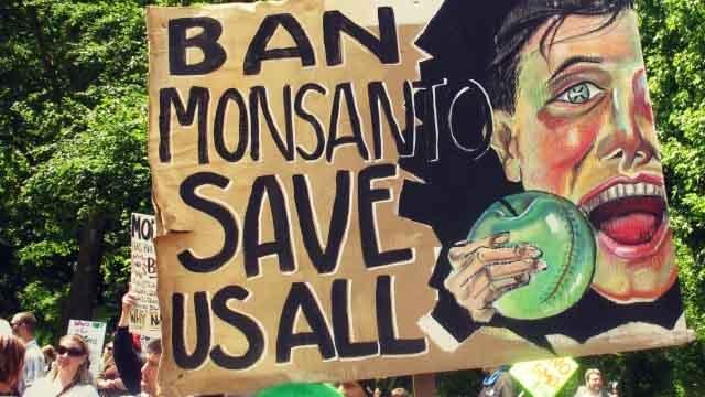 БИОЛОГИ НАШЛИ СПОСОБ НЕ ОСТАВЛЯТЬ «УЛИК» ПРИ СОЗДАНИИ ГМО