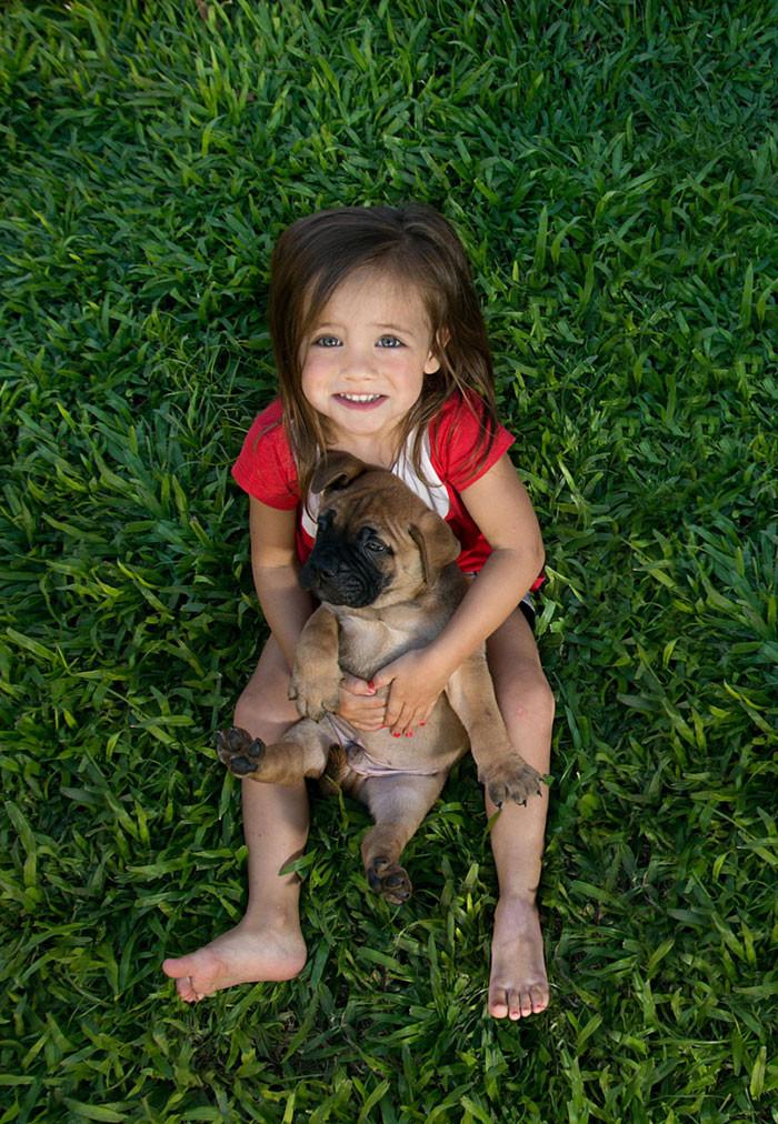 Родители подарили щенка  дружба, ребенок, собака