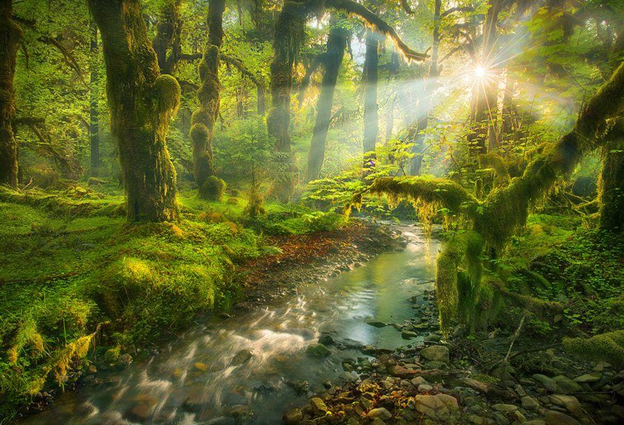 Волшебство и сказка в красивых фотографиях