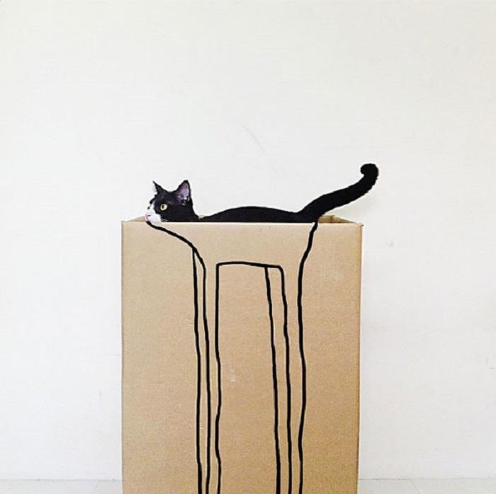 Идеально подходящий кот.
