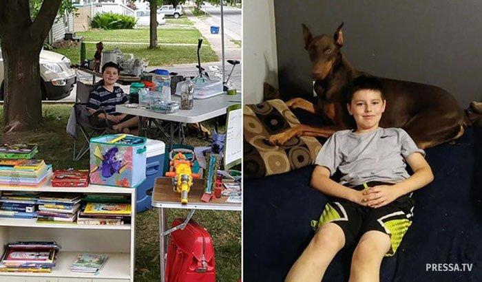 10-летний мальчик выставил на продажу все игрушки, чтобы спасти свою собаку