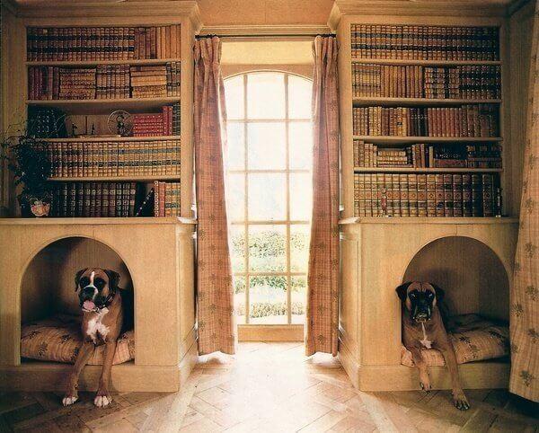 Будки для собак в книжных стеллажах