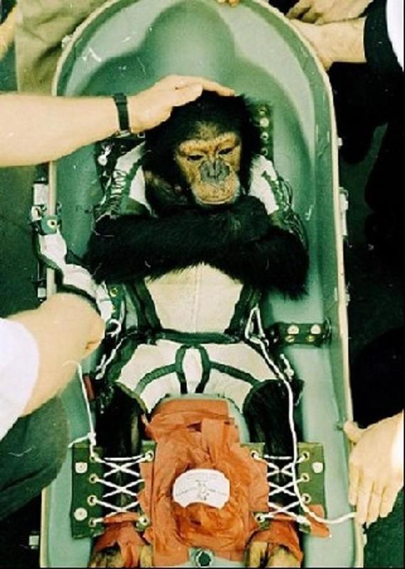 animalspace08 570x800 История покорения космоса животными