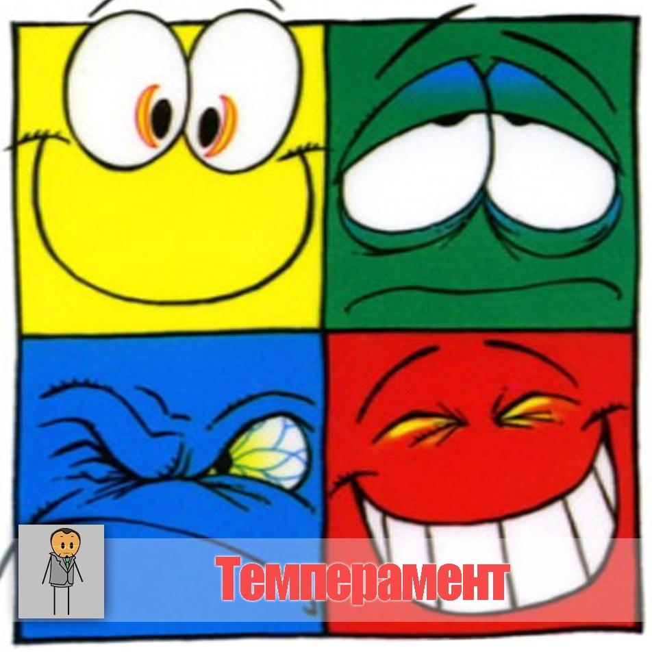 Тест «Ваш темперамент»