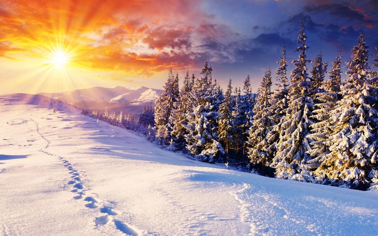 22 декабря-День зимнего солнцестояния... Ждем лето