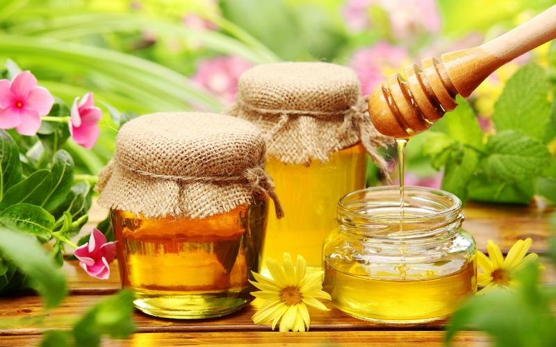 Целебный мёд медового спаса