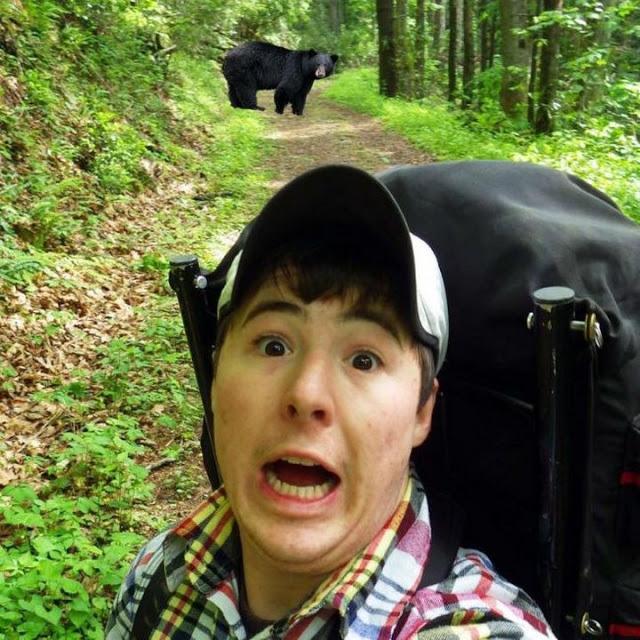 Туристы массово подвергают себя опасности, пытаясь сделать селфи с медведями