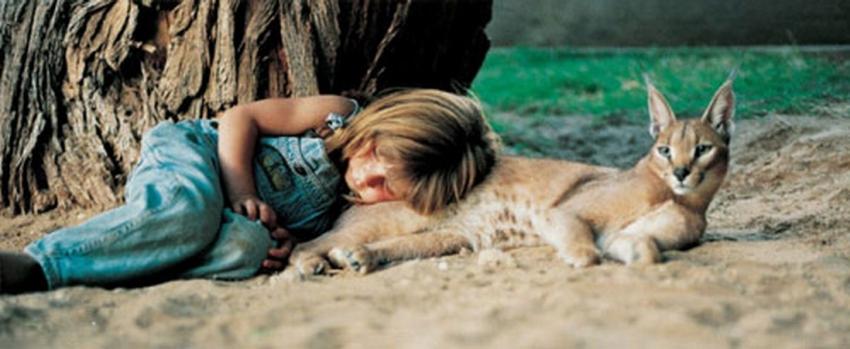 Вдохновляющие истории!!! Друзья девочки Типпи - слоны, львята, леопарды, змеи и хамелеоны. Ее взаимоотношения с животными просто поражают!
