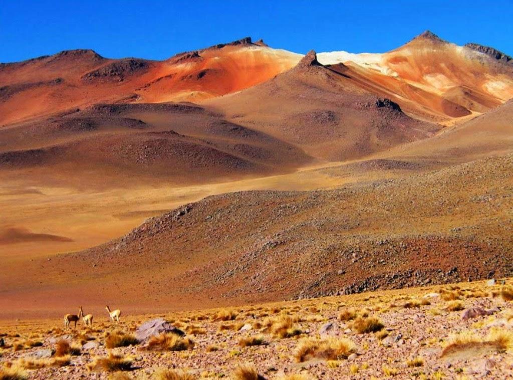 Альтиплано - Земной уголок с неземными пейзажами