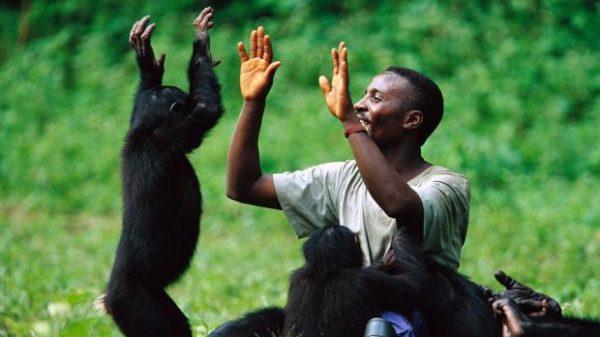 Самые необычные приматы наше…