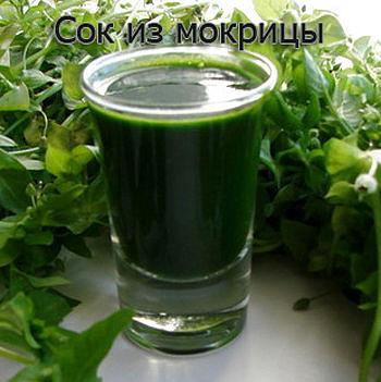 """""""МОКРИЦА"""" сорняк, огородный доктор и кулинарный изыск ?"""