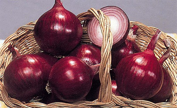 О таких удивительных свойствах красного лука вы еще не слышали! Рецепт от Игоря Князькина