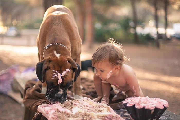 Настоящий праздник  дружба, ребенок, собака