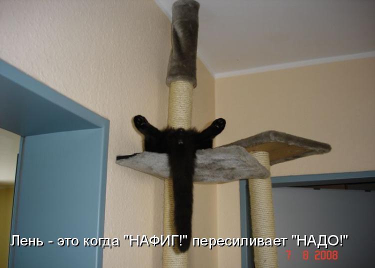 http://mtdata.ru/u24/photo9673/20537368571-0/original.jpg