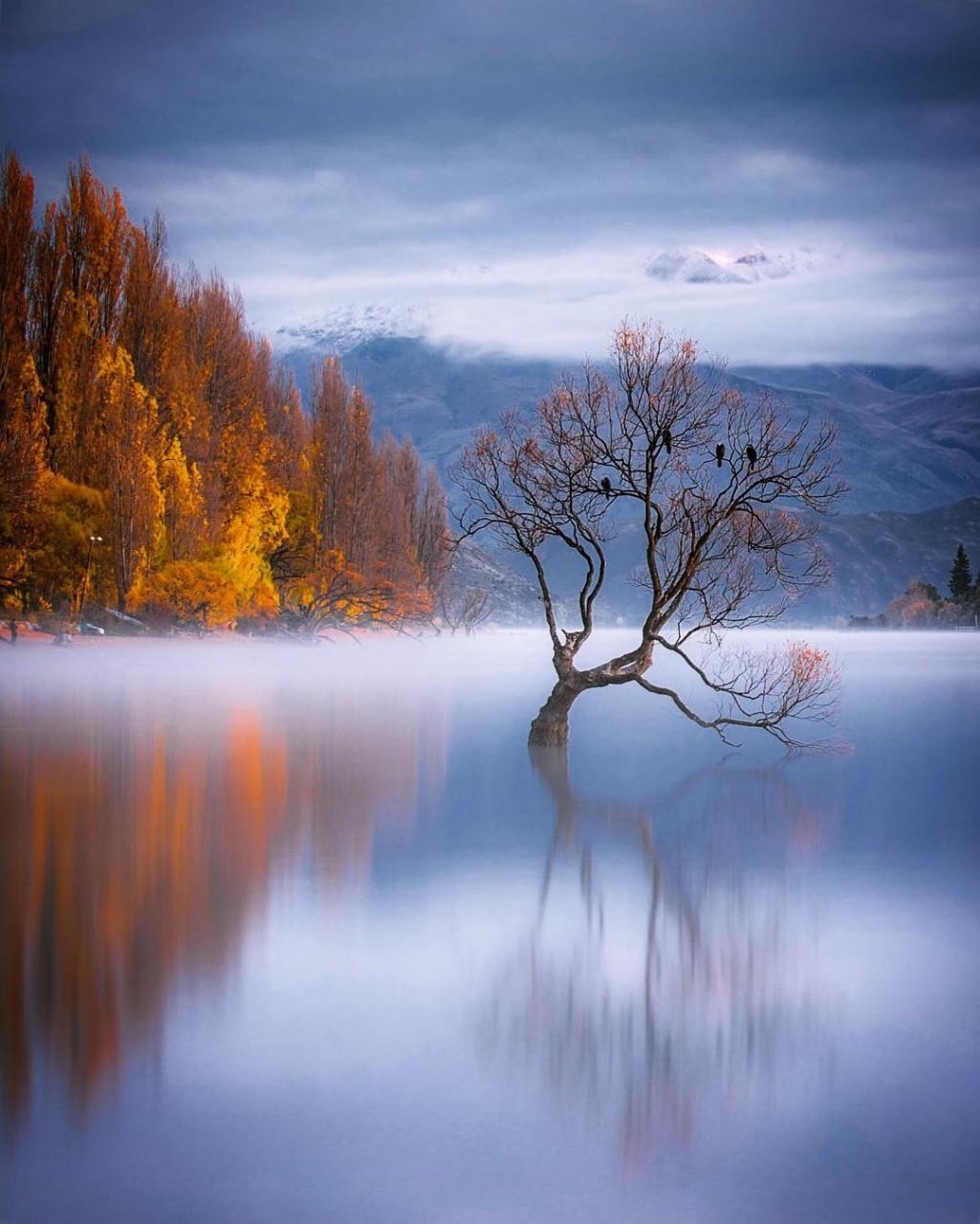 Захватывающие пейзажи Рейчел Стюарт