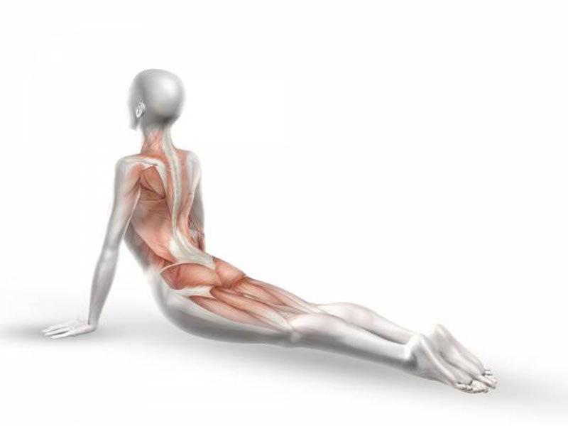 Упражнение после пробуждения: для гибкости и сохранения молодости.