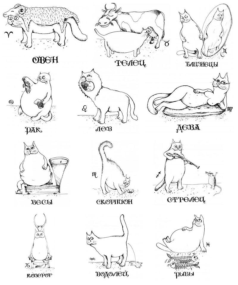 Прикольный гороскоп.