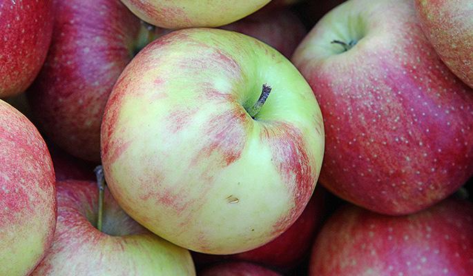 яблоки от холестерина