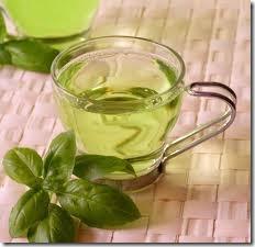 Учёные выявили в составе зелёного чая вещество, которое участвует в процессе генерации нейронных клеток
