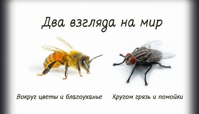 """""""Совки"""" как маркер"""