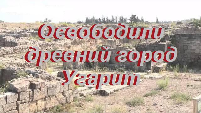 Освободили древний город Угарит