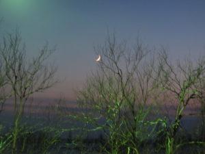 Новолуние, приметы на растущую луну