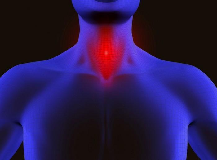 Изменение тембра голоса хирургическим путем