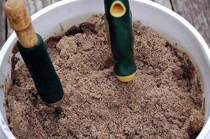12 полезных садовых хитростей