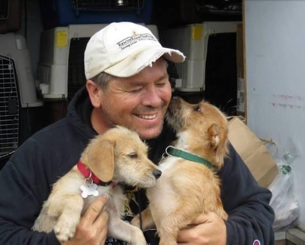 Дорога спасения: мужчина проводит по полгода в дороге, спасая собак