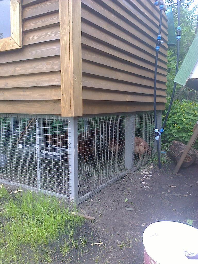 В итоге на таком участке живут пять кур. Несут по семь, восемь яиц за три дня. Разводку с кубика еще не доделал так что не пинайте. своими руками, сделай сам