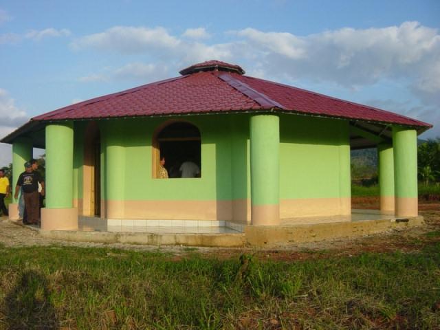 Строительство дома из пласти…
