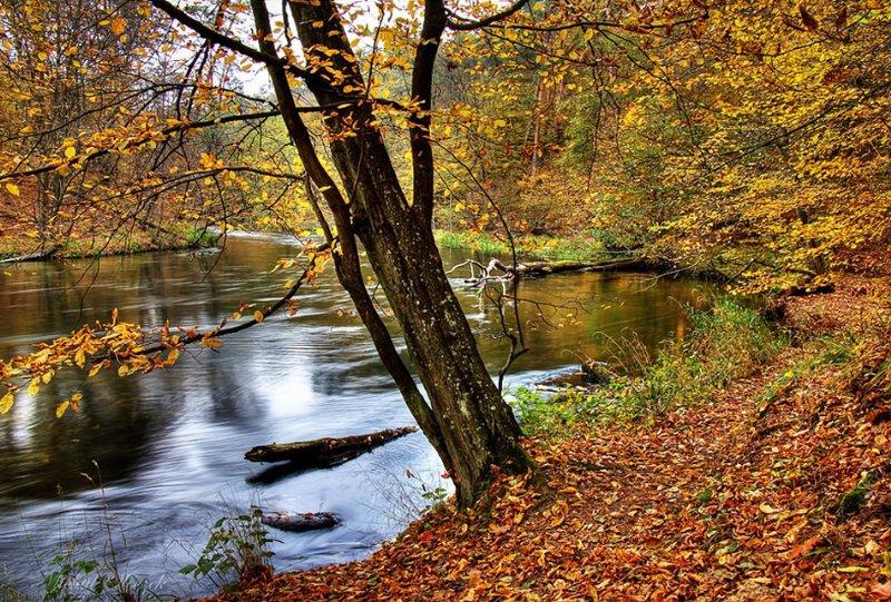 NewPix.ru - Осенняя пора - не время для грусти. Красивые фотографии осени