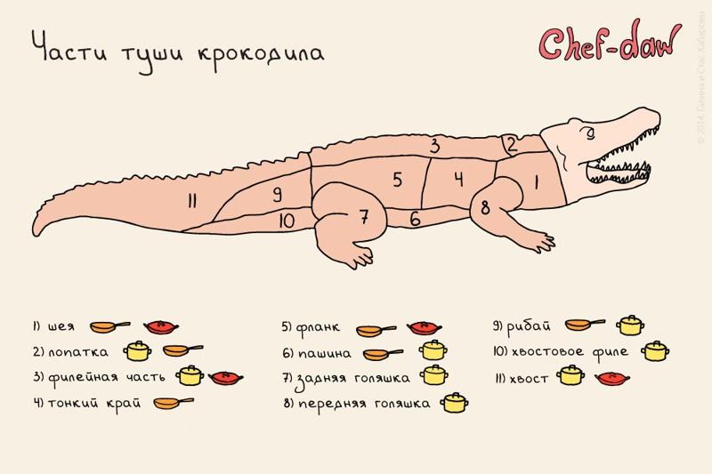И напоследок — как готовить крокодила Шпаргалки, кухня, открытки