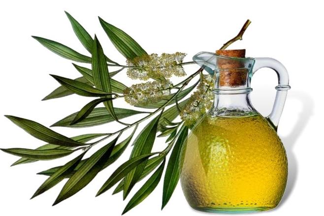 Чистая кожа с помощью масла чайного дерева