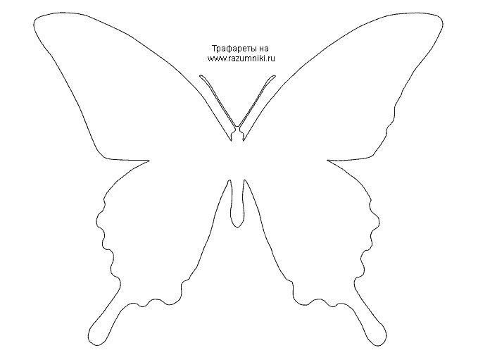 Шаблоны бабочками как сделать 31