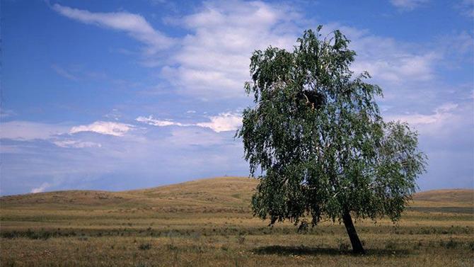 10 национальных парков и заповедников России, которые нужно посетить