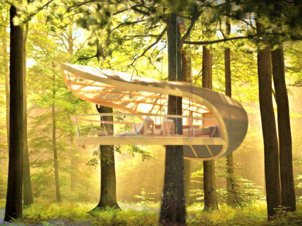 Мечта детства: Домик на дереве