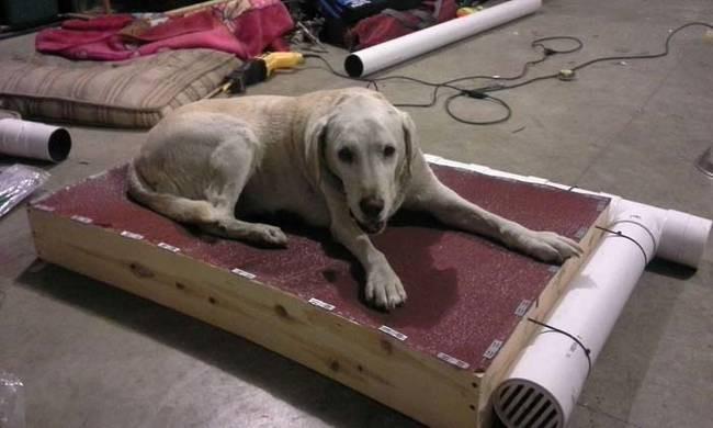 Лежак для собаки лабрадора