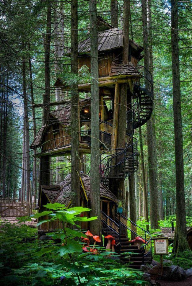 3. Трехуровневый домик на дереве в Британской Колумбии, Канада. в мире, дом