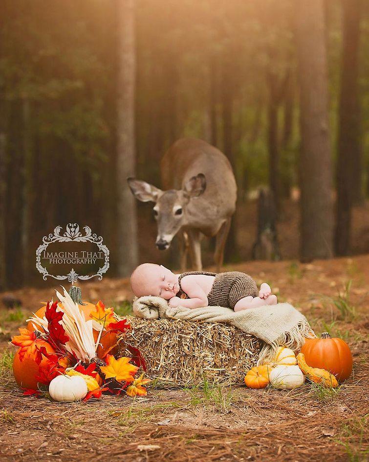 олень забрел в кадр, животные фотобомбы, олень фотосессия ребенок в сказку