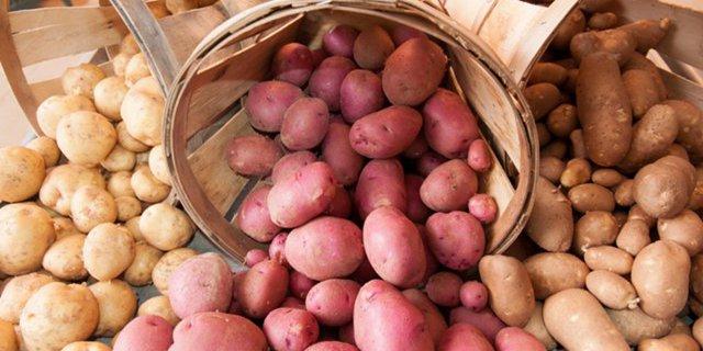 Импортный картофель фри хотят запретить в России