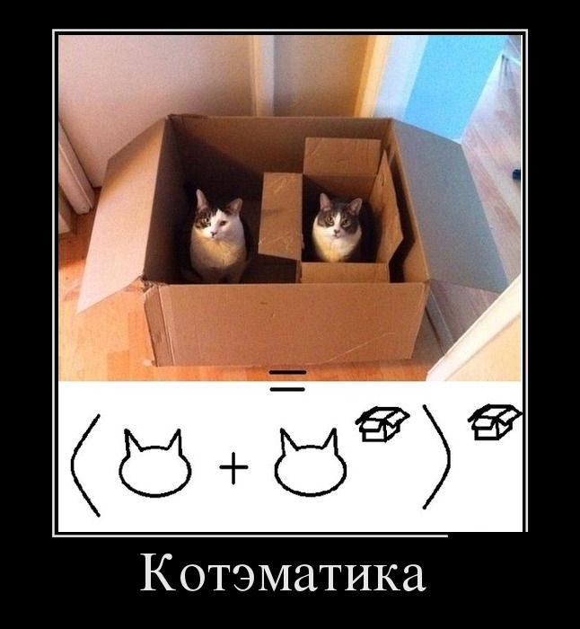 http://mtdata.ru/u24/photoA838/20002360656-0/original.jpg#20002360656