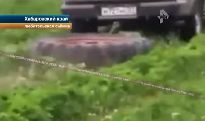 Полпред губернатора Шпорта разгромил клубничную ферму под Хабаровском