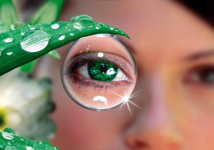 15 народных средств и трав для улучшения зрения
