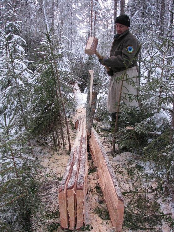 Уехали в лес и занялись сексом