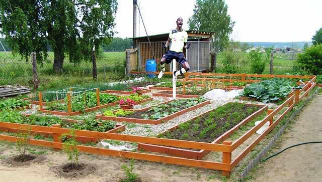 Защита огорода от порчи Доска объявлений