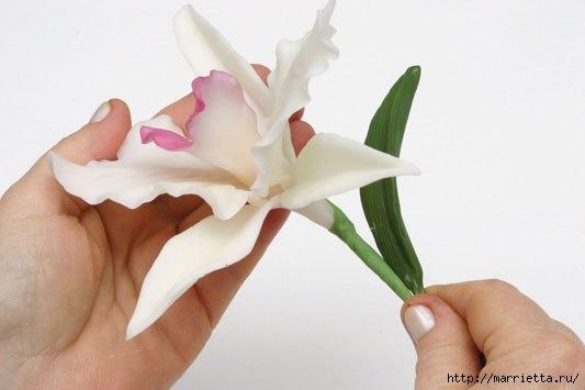 Орхидея из холодного фарфора