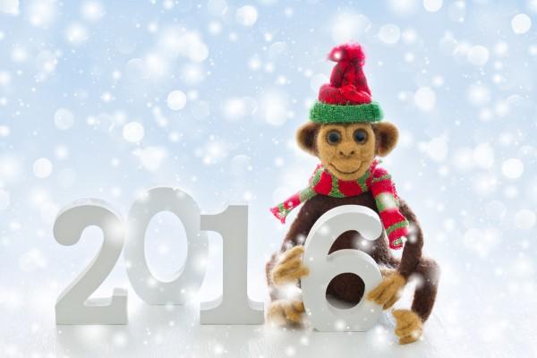 Обезьяна 2017 год как встречать новый год