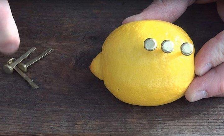 Как с помощью лимона разжечь костёр