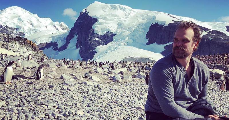 Шериф Хоппер из сериала «Очень странные дела» отправился на Южный полюс, чтобы записать танец с пингвинами